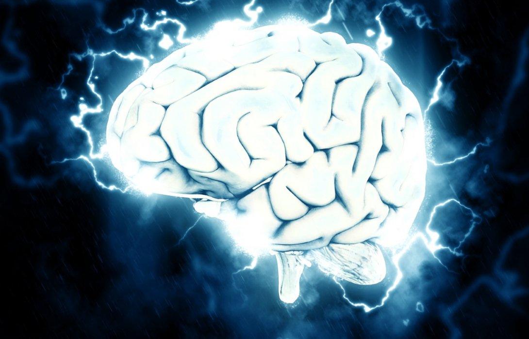 งานวิจัยชี้ อาหารเมดิเตอร์เรเนียนและน้ำมันมะกอก มีส่วนช่วยให้ผลการเรียนดีขึ้น
