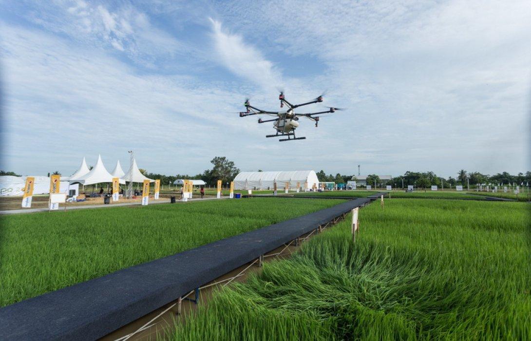 """""""ซินเจนทา"""" ฉลองวันข้าวและชาวนาไทย โชว์นวัตกรรมเด่น ช่วยชาวนาลดต้นทุนได้ 15%"""