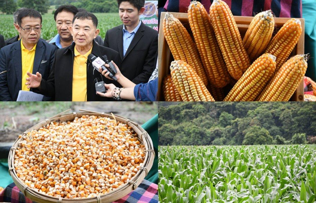 วีรศักดิ์' มั่นใจหลังนำ รมช. พาณิชย์กัมพูชา ดูไร่ข้าวโพดและตลาดไท  คาดช่วยยกระดับความร่วมมือด้านเศรษฐกิจ ปูทางสู่เป้าหมายการค้า 15,000 ล้านเหรียญสหรัฐ