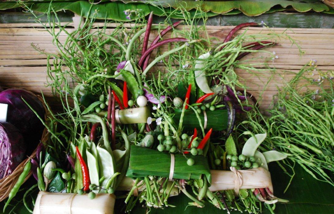 เกษตรอินทรีย์ (มาแรง) แน่ ... เปิดทางน้ำหมักแทนสารเคมี