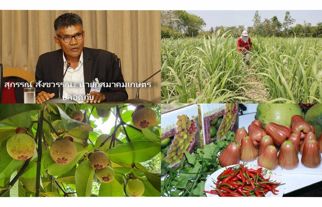 """""""สมาคมเกษตรฯ"""" เผยผิดหวัง คกก. วัตถุอันตราย และกรมวิชาการเกษตร แบนสารเคมีเกษตร ทิ้งภาระให้เกษตรกร"""