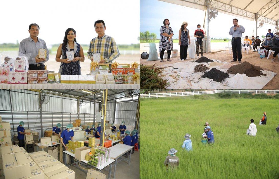 """""""กอระ เอ็นเตอร์ไพร์ซ"""" จับมือเกษตรกรสร้างเครือข่ายข้าวหอมมะลิออร์แกนิก บุกตีตลาดทั้งในและต่างประเทศตั้งเป้าปีนี้โต 500 %"""